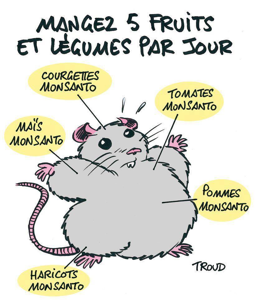 monsanto-rats