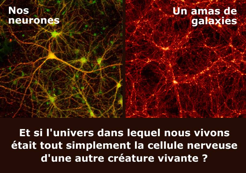 neurones-galaxie
